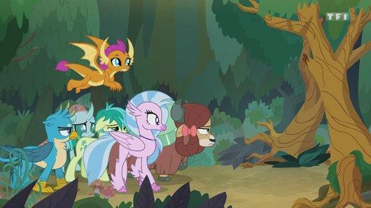 Voir le replay de l'émission My little pony : les amies c'est magique du 17/01/2019 à 08h30 sur TF1
